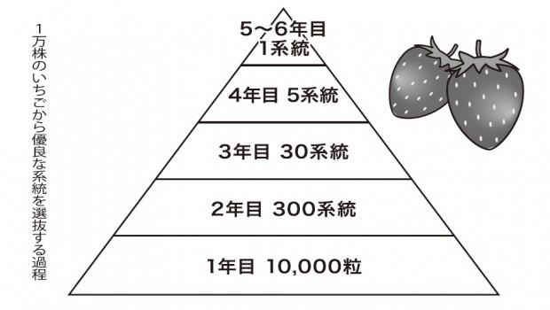 記事クラス渡辺さんWEB教材